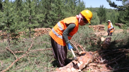 Erzincan'da cefakar kadınlar eşlerini orman işlerinde yalnız bırakmıyor