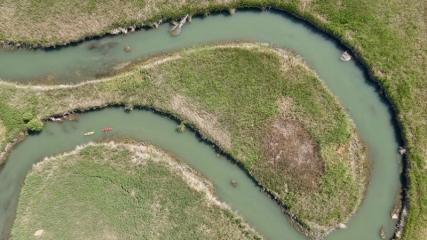 İç Anadolu'nun batısında gizli kalmış bir kuş cenneti: Balıkdamı