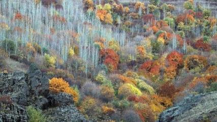 Ağrı'nın dağları sonbahar renklerine büründü