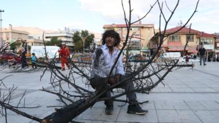 Yangınlara dikkat çekmek için yanmış çam ağacını kente taşıdı