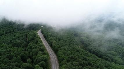 Istranca ormanlarını saran sisin büyüleyici güzelliği ilgi gördü