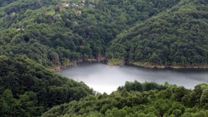 Batı Karadeniz'in 'yeşil örtüsü' doğaseverleri yeniden ağırlayacağı günü bekliyor