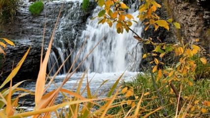 Sarıkamış Ormanları'nda sonbahar güzelliği