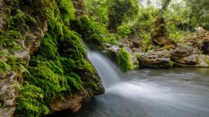 Ormanın içindeki 'gizli cennet' ziyaretçilerini büyülüyor