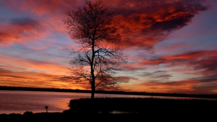 Kızılırmak Deltası'nda gün doğumu