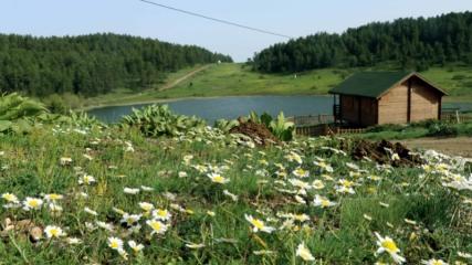Hazım Dağlı Tabiat Parkı'ndaki ilkbahar güzelliği