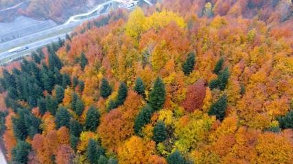 Bolu Dağı sonbahar renklerine büründü