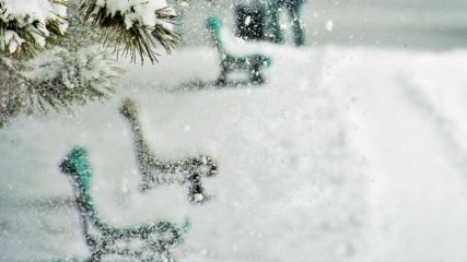 Muş'ta kar güzelliği