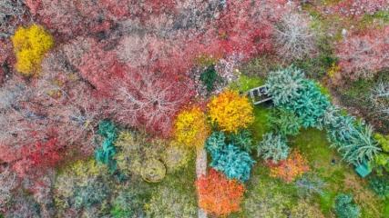 Renk cümbüşünün yaşandığı Amanoslar fotoğrafçıları cezbediyor